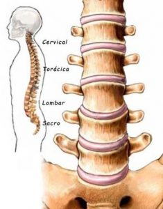 dor coluna lombar